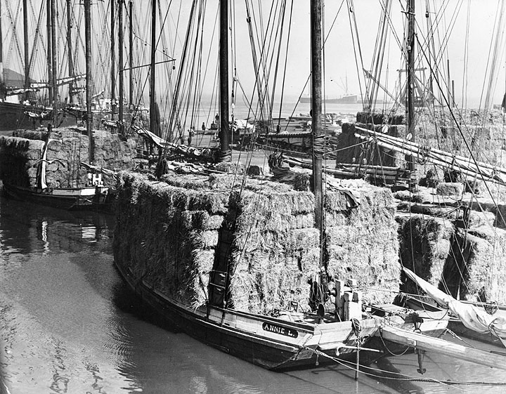 Annie-L-scow-schooner-with-load-of-hay-A12.5.017pl.jpg