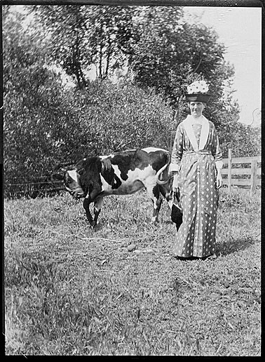 Mrs-williams-and-cow 300dpi.jpg
