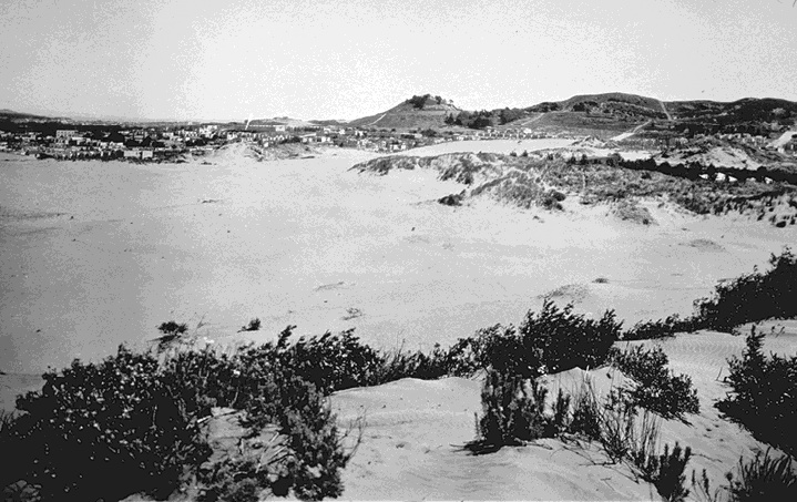 Ecology1$richmond-dunes-c-1890s.jpg