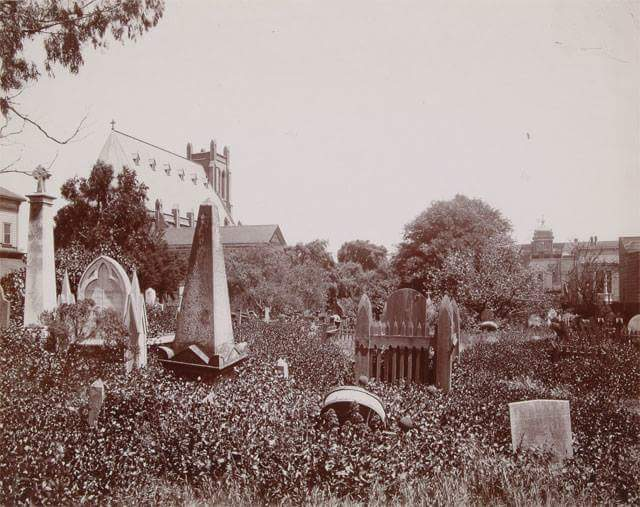 Misson Dolores cemetery late 1800s.jpg